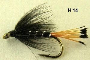 black pennel hackle (mouche noyee)