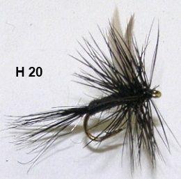 moucheron noir aile black midge black gnat mouche seche ailee. Black Bedroom Furniture Sets. Home Design Ideas